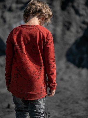 bluza mashmnie wilk wolf dla chłopca zaazuu