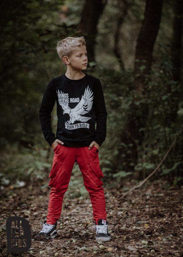 all for kids bluza dla chłopca z orłem
